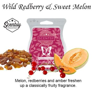 Wild Redberry and Sweet Melon Scentsy Wax Melt