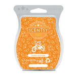 Oodles of Orange Scentsy Wax Bar