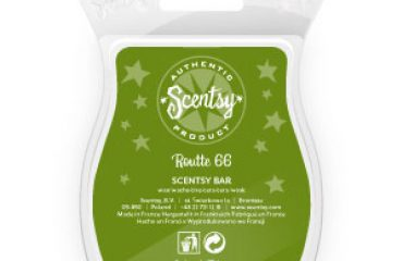 White Tea Amp Cactus Scentsy Bar The Candle Boutique