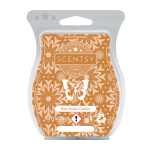 Scentsy rum raisin cookie scentsy bar