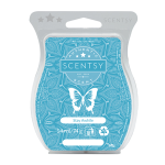 Stay awhile scentsy bar