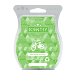 scentsy wild what-a-melon wax bar