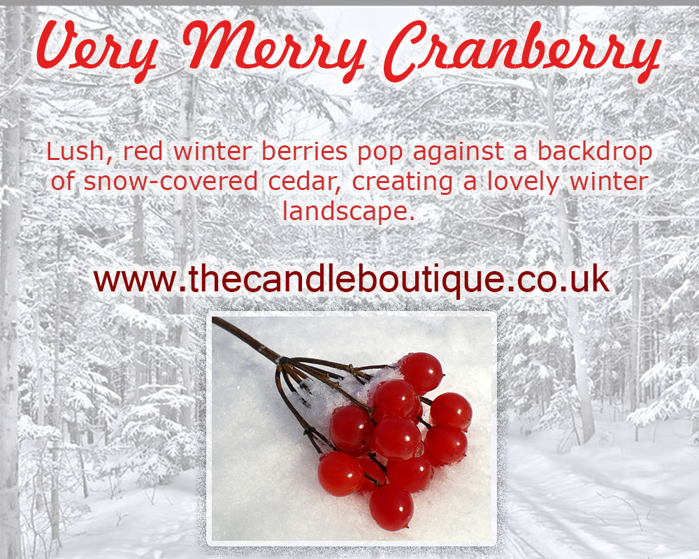 Scentsy Very Merry Cranberry Scented Wax Bar
