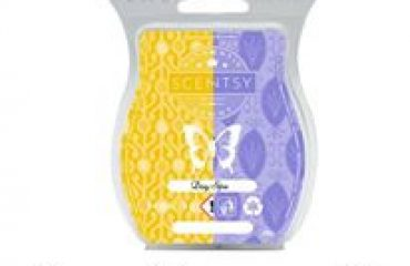 scentsy coconut lemongrass and french lavender mixology recipe