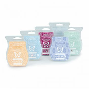 All Scentsy Bars