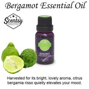 Bergamot Scentsy Diffuser Oil