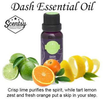 Dash Scentsy Essential Diffuser Oil