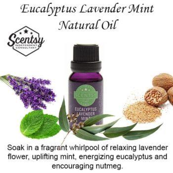 Eucalyptus Lavender Mint Scentsy Diffuser Oil