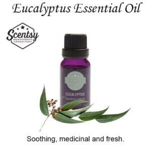 Eucalyptus Scentsy Essential Oil
