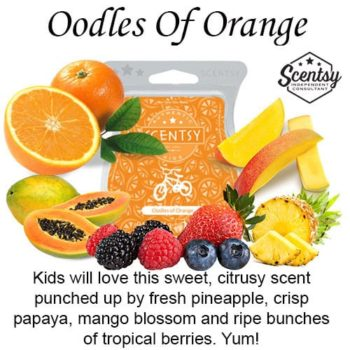 Oodles of Orange Scentsy Wax Melt