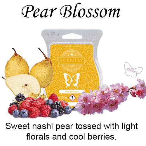 Pear Blossom Scentsy Bar