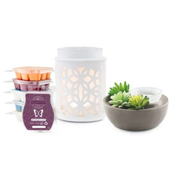 Perfect Scentsy - 2 x £48 Warmers & 6 Bar