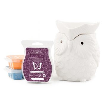 Scentsy System - £42 Warmer