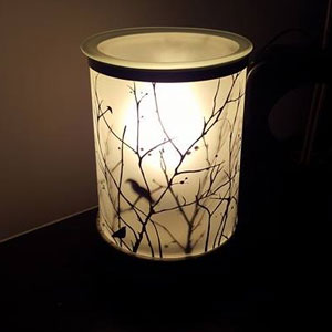 Starlings Lightbulb Electric Wax Warmer