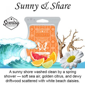 Sunny and Share Scentsy Wax Bar