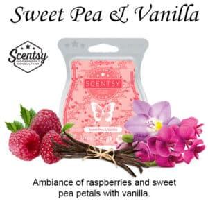 Sweet Pea & Vanilla Scentsy Wax Bar