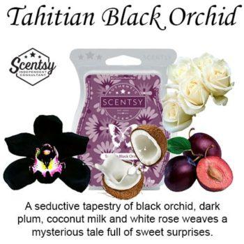 Tahitian Black Orchid Scentsy Wax Melt