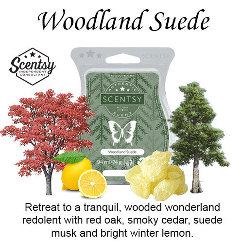 Woodland Suede Scentsy Wax Melt
