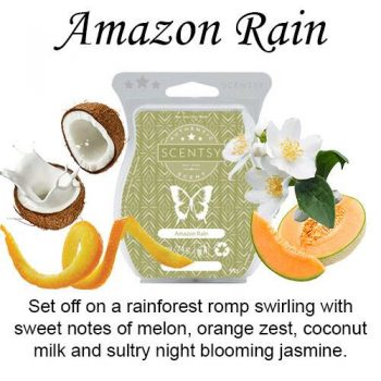 amazon rain scentsy wax bar melt