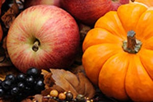Autumn & Winter Fragrances