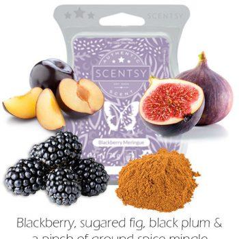 blackberry meringue scentsy wax melt