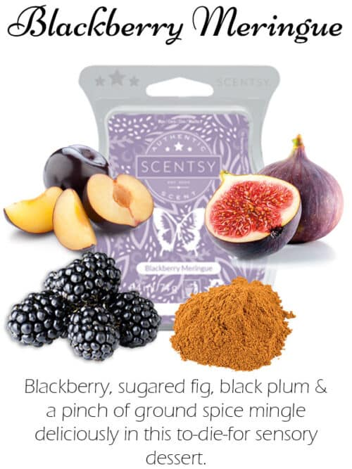 blackberry meringue scentsy wax melt