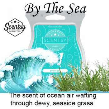By The Sea Scentsy Wax Melt