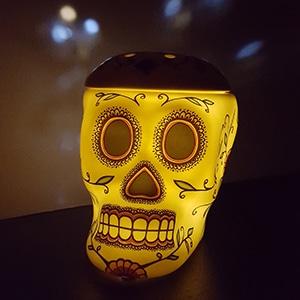 Calavera Day Of The Dead Sugar Skull Scentsy Warmer