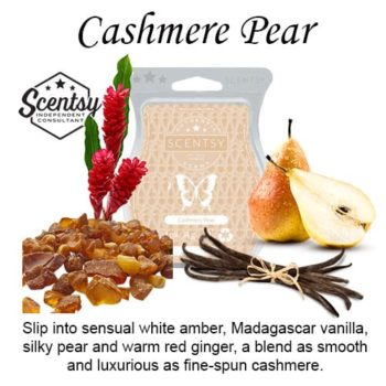 Cashmere Pear Scentsy Wax Melt