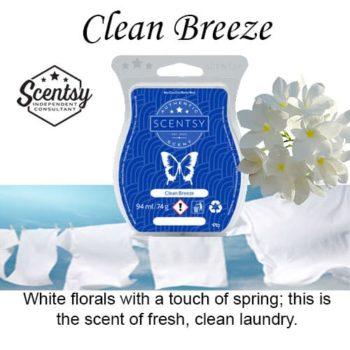 Clean Breeze Scentsy Wax Melt