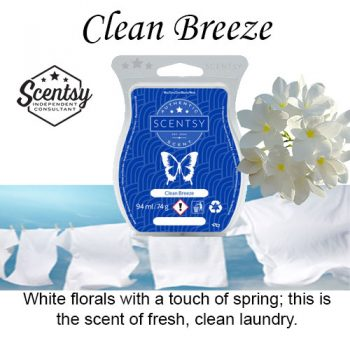 Clean Breeze Scentsy Wax Melt