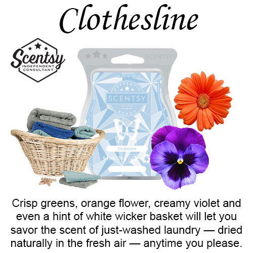 Clothesline Scentsy Wax Melt