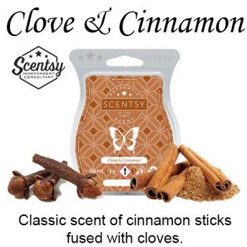 Clove and Cinnamon Scentsy Wax Melt