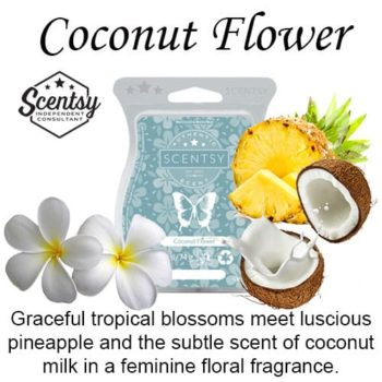 Coconut Flower Scentsy Wax Melt