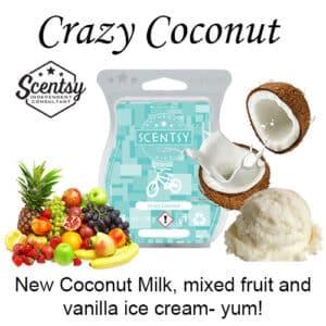 Crazy Coconut Scentsy Wax Melt