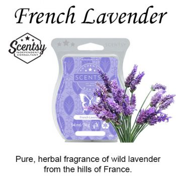 French Lavender Scentsy Wax Melt