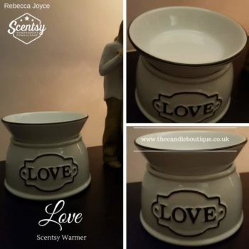 Love Scentsy Electric Wax Warmer
