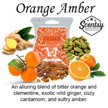 Orange Amber Scentsy Scented Wax Melt
