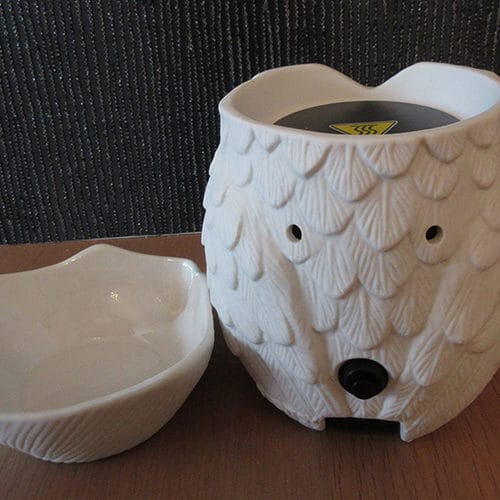 back of owl whoot warmer