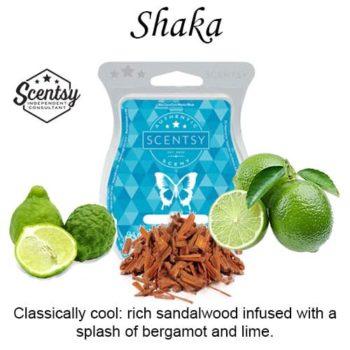 Shaka Scentsy Wax Melt
