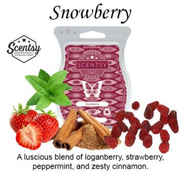 Snowberry Scentsy Wax Melt