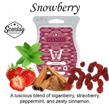 Snowberry Scentsy Wax Melt
