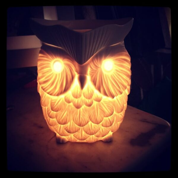 Scentsy Whoot Warmer