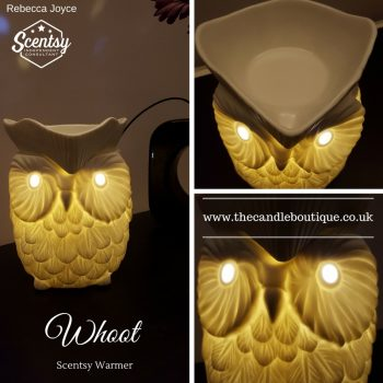 Whoot Owl Scentsy Electric Wax Warmer