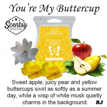 youre my buttercup scentsy wax melt