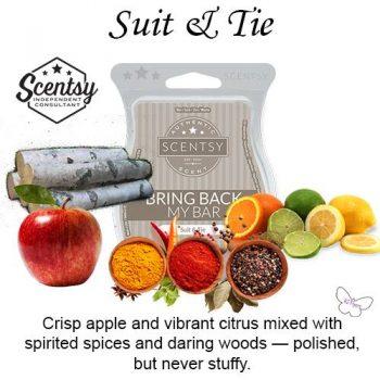 Suit & Tie Scentsy Bar