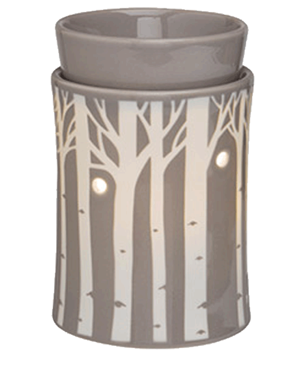 What is a Scentsy warmer?