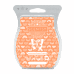 Melon and Apple Granita Scentsy Bar