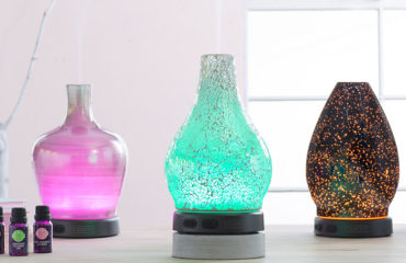 Scentsy Diffuser Febuary 2017 Deal
