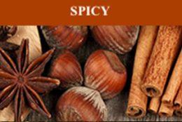 Scentsy Spicy Fragrances